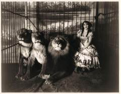 Lion Tamer Female Three