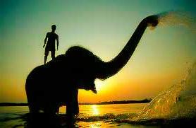 elephant-and-rider